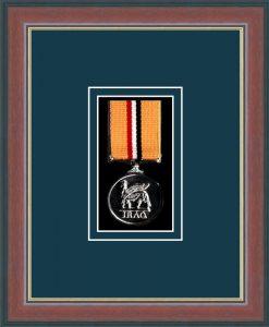 Military Medal Frame – M1-78F Dark Walnut-Nightshade Mount