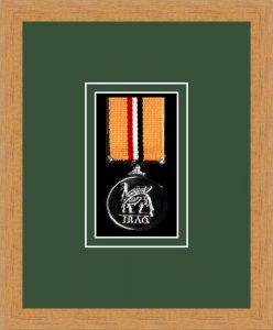 Military Medal Frame – M1-98F Light Woodgrain-Forest Green Mount