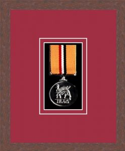 Military Medal Frame – M1-99F Dark Woodgrain-Beaujolais Mount