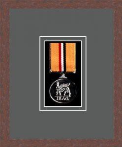 Military Medal Frame – M1-99F Dark Woodgrain-Grey Mount