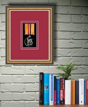 Frames For One Military medal £22.73