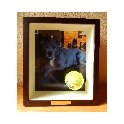 Marvin Puddle Dog With Ball Picture Frame