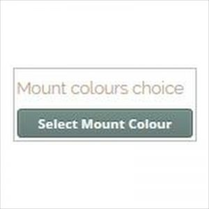Picture frame designer select mount colours
