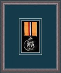 Oak picture frame for one military medal with nightshade mount
