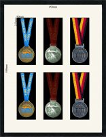 Six sports medal picture frame.